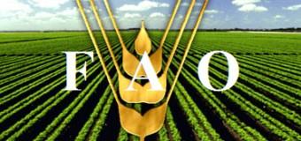 FAO va oferi agricultorilor moldoveni 400 milioane dolari SUA