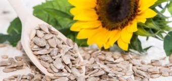 De ce să mănânci seminţe de floarea soarelui: 10 beneficii uimitoare