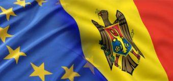 Producătorii moldoveni învață de la olandezi și belgieni. Află ce!