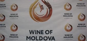 Vinificatorii moldoveni preiau experiența cehilor