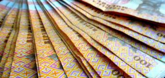 Peste un milion de lei alocat în buget din vânzarea vinietelor