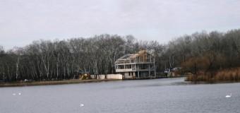 """Galerie foto //Lebede pe lacul din Parcul """"La Izvor"""""""