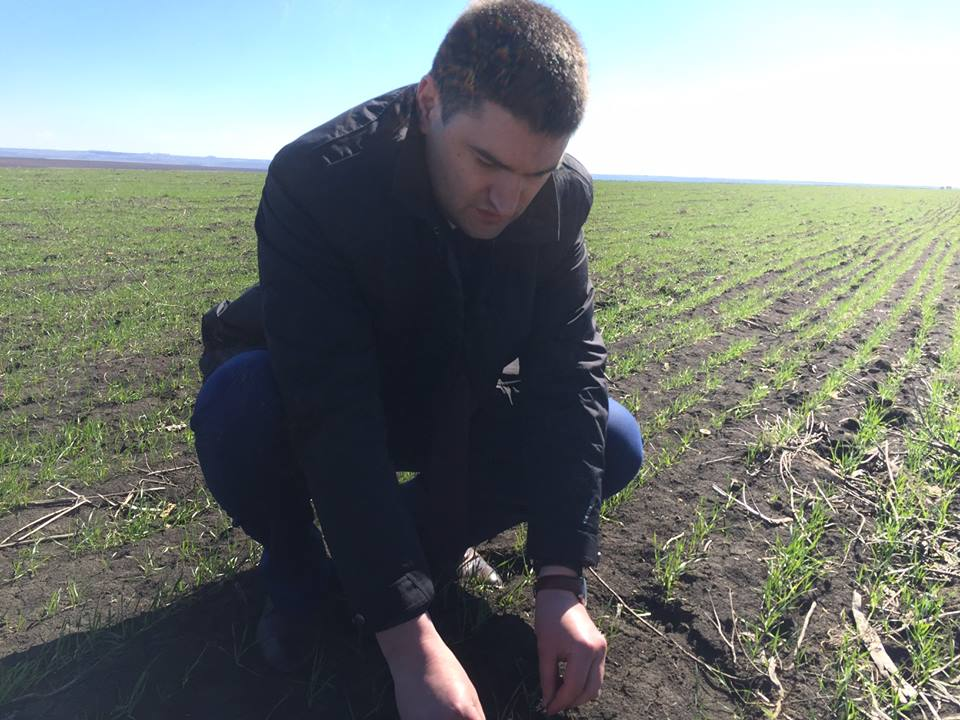 Ion Sula: Avem un an agricol promițător!
