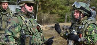 Militarii Armatei Naţionale la exerciţii multinaţionale în Germania şi România