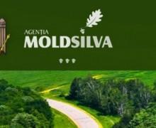 """Agenția """"Moldsilva"""": Descentralizarea și distanțarea socială provoacă, pentru anumiți indivizi, o criză de idei în materie de administrare publică locală"""