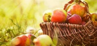 Iubitorii de mere sunt aşteptaţi sâmbătă la Festivalul Naţional al Mărului