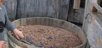 Încă două persoane au murit intoxicate cu dioxid de carbon, degajat la fermentarea vinului