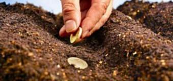 MAIA: 655 de fermieri au primit subvențiile pentru anul trecut