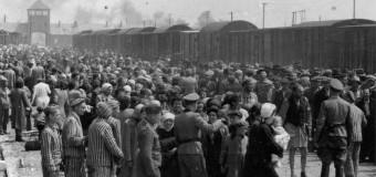 Deputații au adoptat o declarație prin care condamnă Holocaustul