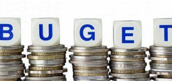 Parlamentul a modificat bugetul de stat