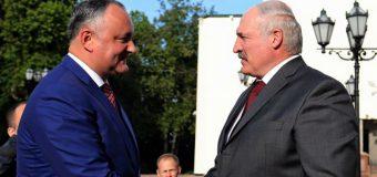 Igor Dodon l-a invitat pe Aleksandr Lukaşenko să viziteze Moldova în timpul cel mai apropiat