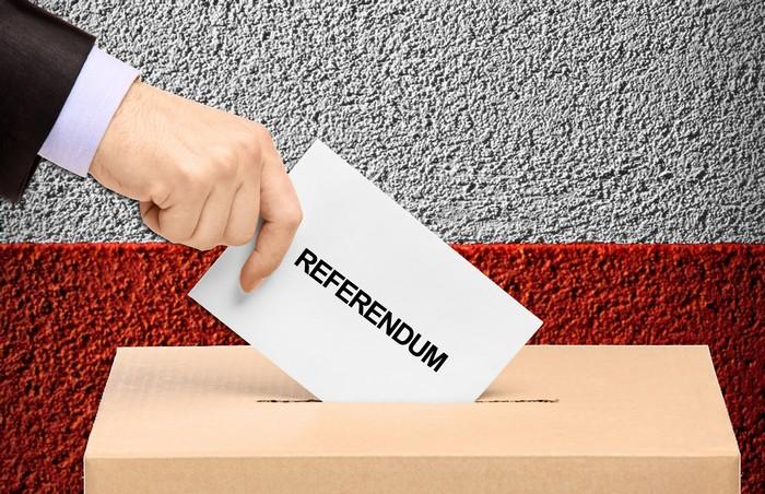 Un nou referendum? Societatea civilă a lansat o inițiativă!