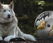 Zodiac chinezesc. Anul Câinelui de Pământ în 2018. TREI zodii vor cunoaşte numai REUŞITE