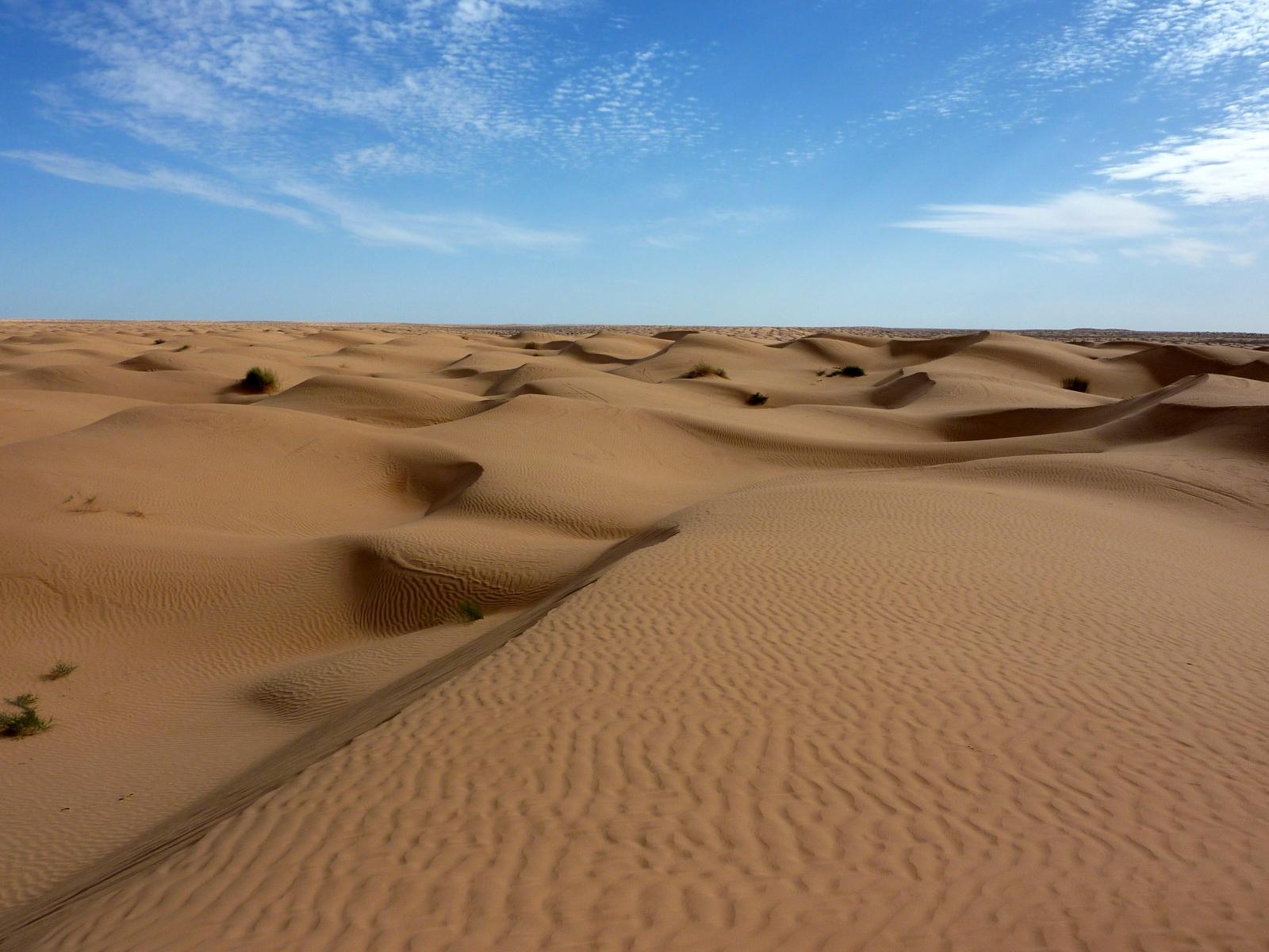 Deșertul Sahara, acoperit cu zăpadă (video)