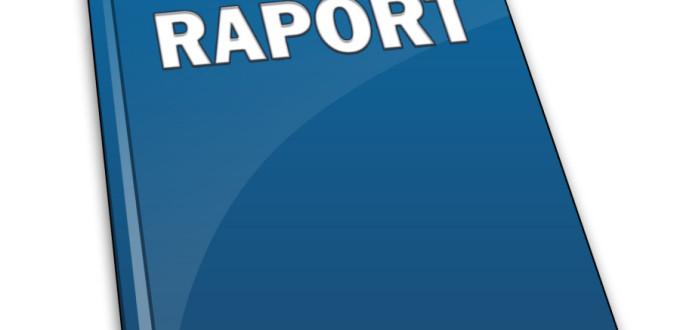 Concluziile primului Raport Interimar al Misiunii ENEMO privind alegerile locale generale