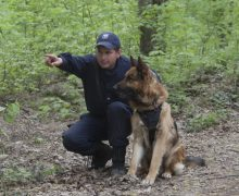 Cea mai bună echipă canină a Poliției de Frontieră – apreciată