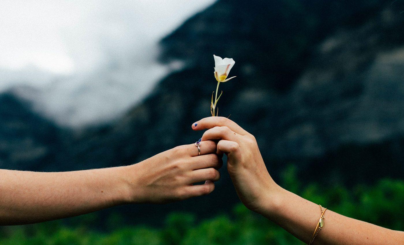 Cele 10 Tulpini Celeste care ne influenţează viaţa. Tu cu care te identifici?
