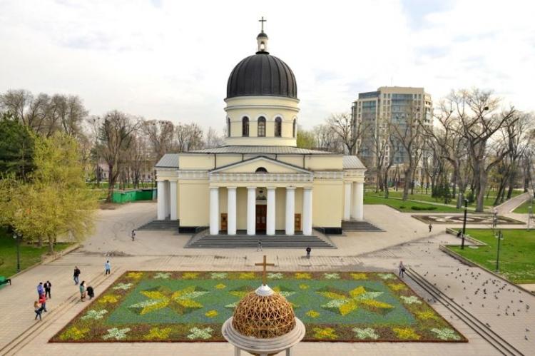 Pentru o săptămână, în scuarul Catedralei va fi amenajat un covor de flori. Iată cât costă ideea Primarului interimar