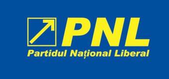 Candidatul PNL a depus actele pentru funcția de primar al capitalei