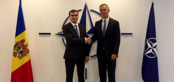 Ambasadorul RM la NATO a prezentat scrisorile de acreditare