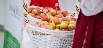 În ajunul meciului Moldova-Franța, pasagerii Aeroportului Chișinău – întâmpinați cu mere