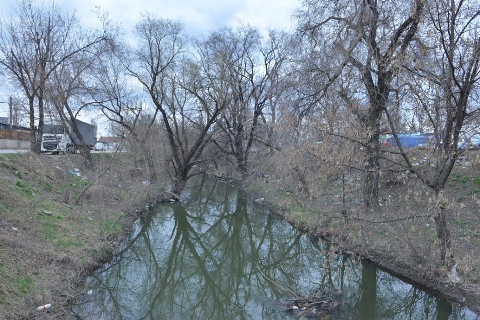 Cetățenii participă la acțiunea de salubrizare a albiei râului Bâc