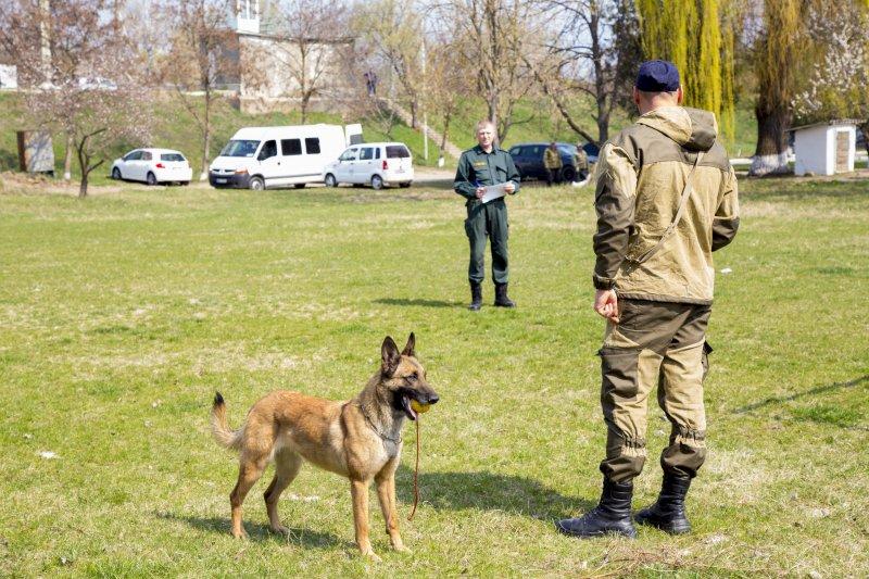Echipele canile ale Poliției de Frontieră – instruite de specialiști din Letonia