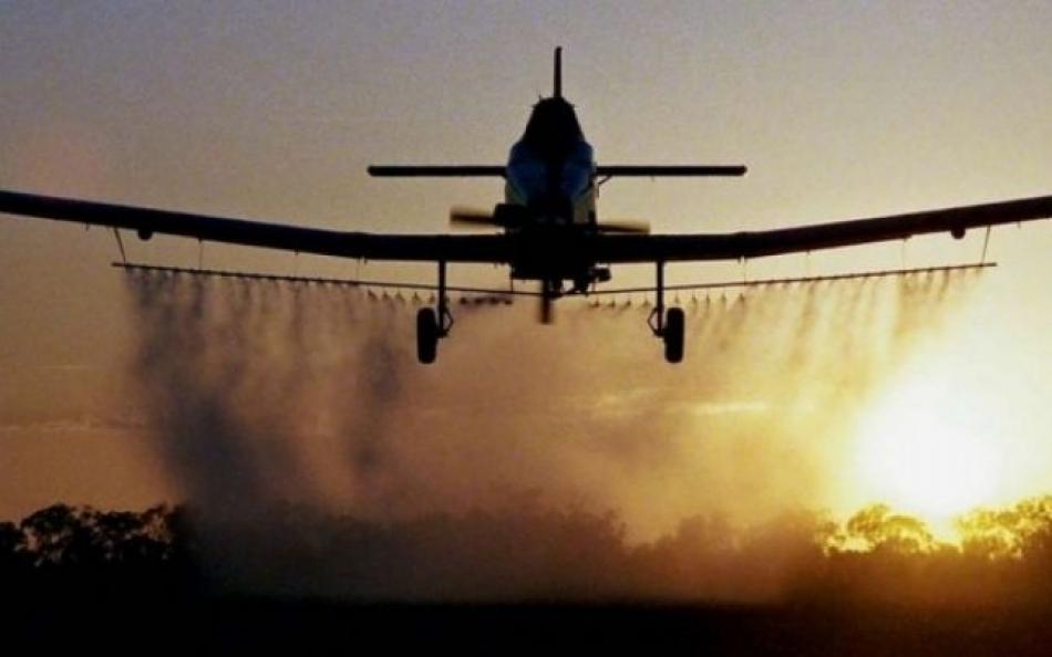 În fondul forestier național, vor avea loc acțiuni de combatere aeriană a dăunătorilor pădurii