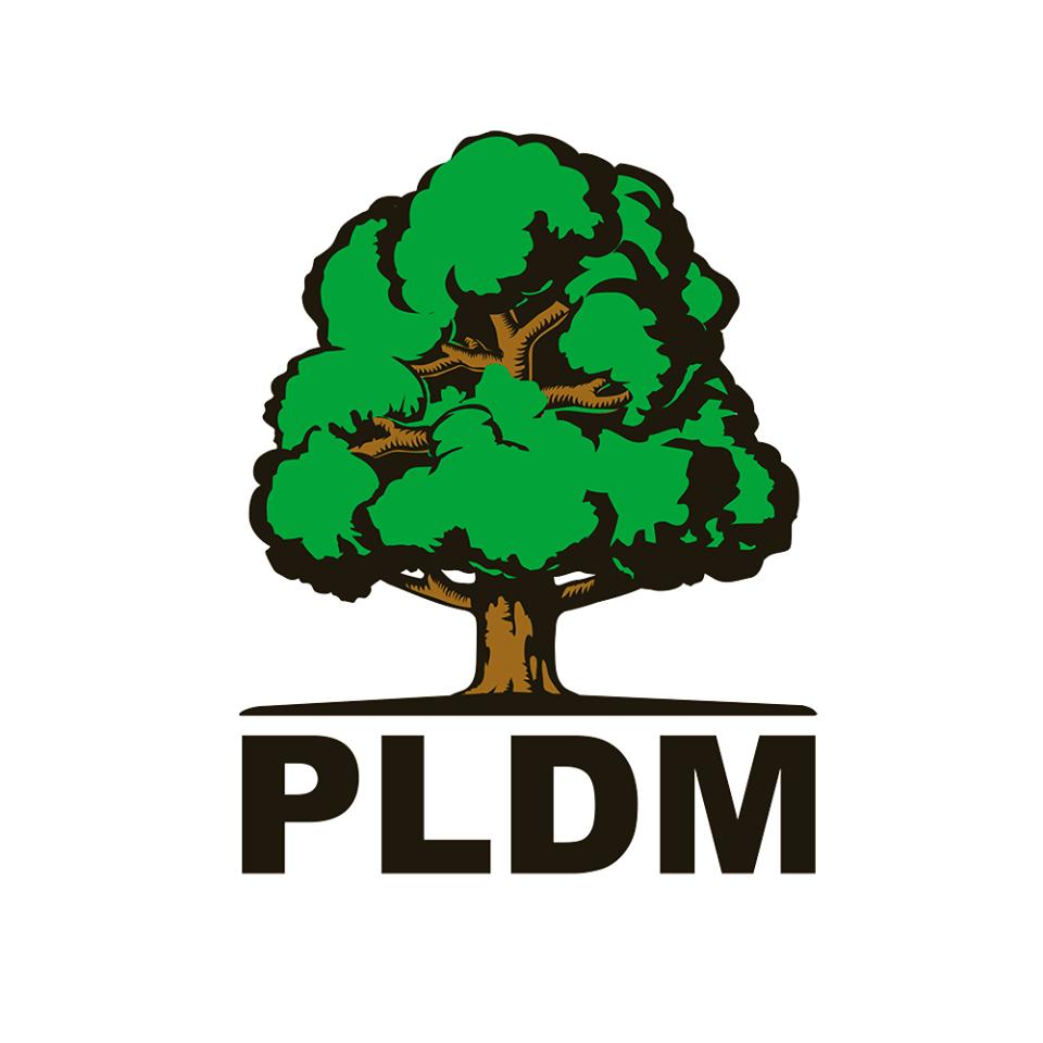 PLDM: Rezultatele de ieri de la Hâncești nu sunt atât o victorie a socialiștilor, cât o înfrângere a partidelor pro-europene și unioniste