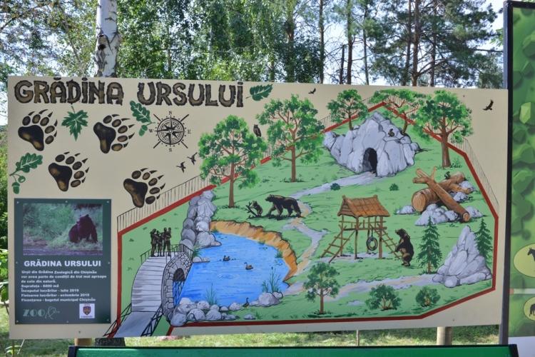 La Grădina Zoologică din Chișinău are loc amenajarea unei voliere noi pentru urși