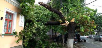 Serviciile municipale – mobilizate în teritoriu pentru lichidarea consecințelor în urma ploilor