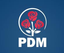 Ce a decis PDM cu referire la moțiunea împotriva ministrului de Externe
