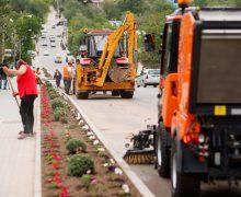 Acțiuni de salubrizare în orașul Taraclia, la inițiativa primarului Partidului ȘOR