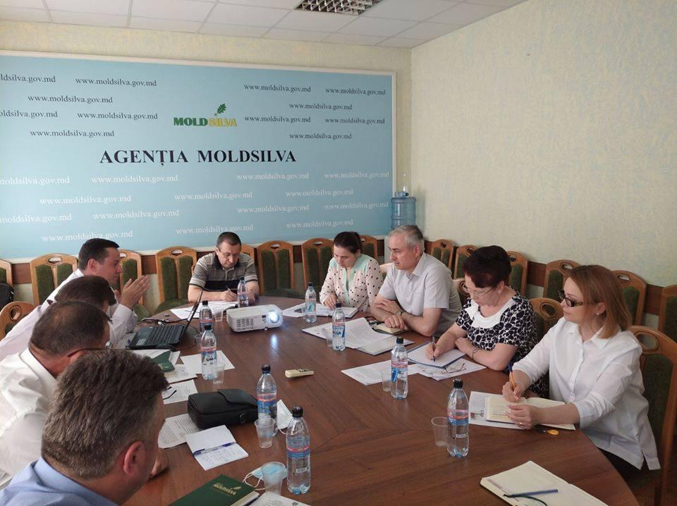 """Directorul Agenției """"Moldsilva"""" a subliniat, în raportul său, că se solicită responsabilitate maximă la rectificarea bugetului 2020"""