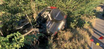 Un polițist a pierdut controlul volanului și s-a izbit într-un copac