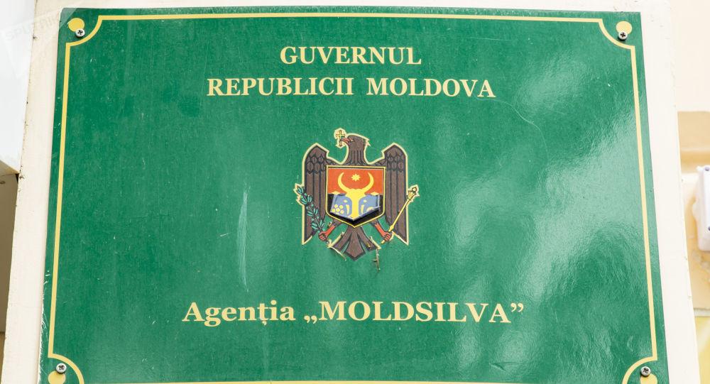 """Agenţia """"Moldsilva"""" comunică despre un caz tragic ce s-a soldat cu decesul unui angajat sezonier"""