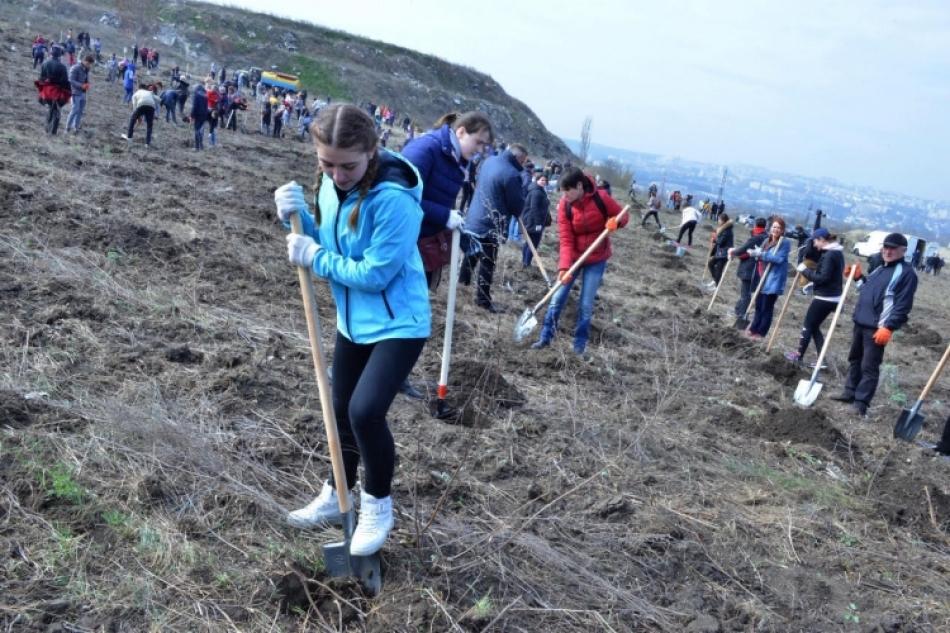 Mâine se dă startul campaniei de plantare a arborilor pe teritoriul capitalei