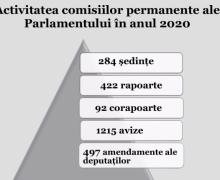 Peste 500 de rapoarte și corapoarte, dar și 1215 de avize au fost prezentate de comisiile parlamentare permanente în anul trecut