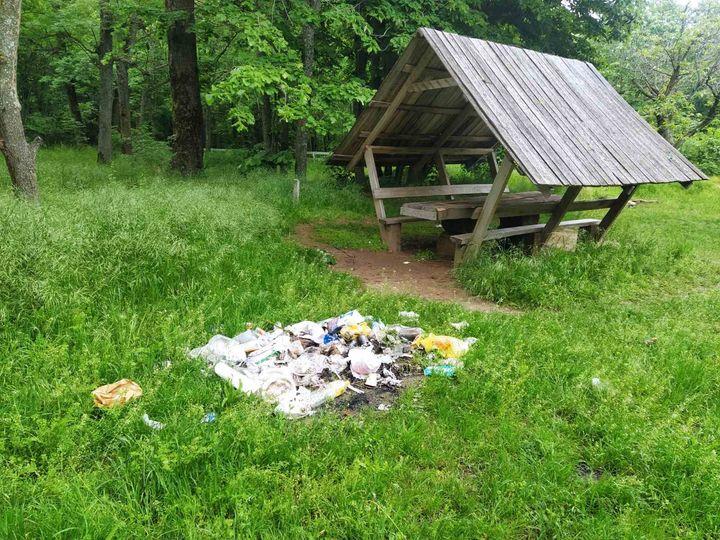 """Agenţia """"Moldsilva"""":  Facem apel la responsabilitate şi atenţie deosebită atunci când vizitaţi fondul forestier"""